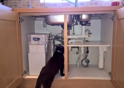 A Purrrfect Installation